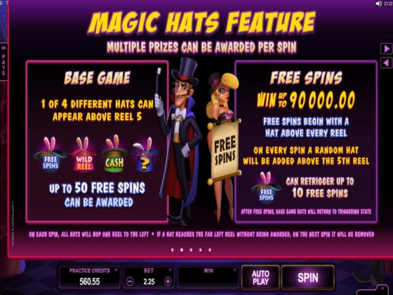 Rabbit in the Hat Online Slot Pay Table