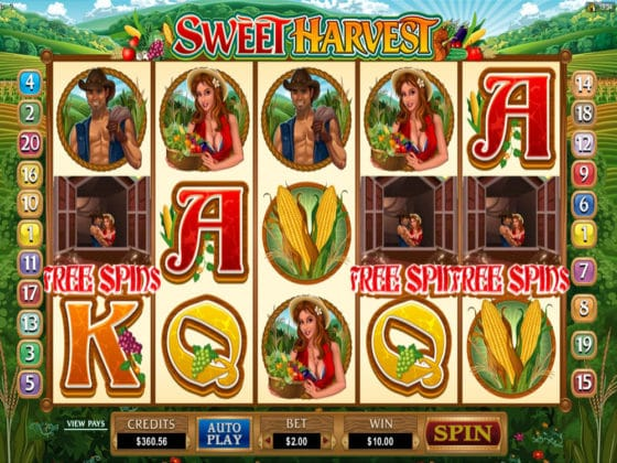 Sweet Harvest Online Slot Bonus Hit