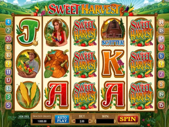 Sweet Harvest Online Slot